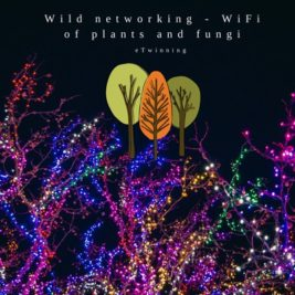 Wild Networking – WiFi of Plants and Fungi